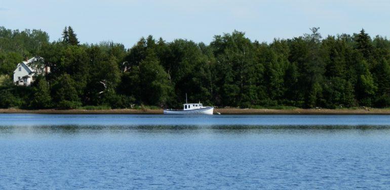 miramichi boat